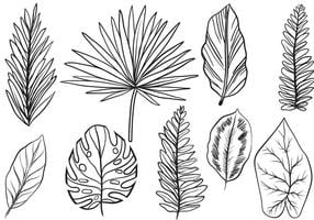 Free Vintage Exotic Leaves vektorer