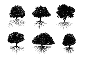 Árbol dañado con las raíces del vector