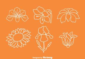 Flowers Collection Line Vectors