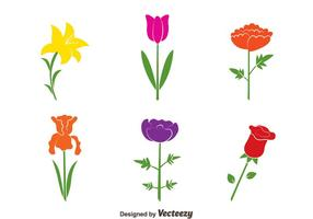 Colorful Flowers Collection Vectors