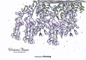 Hand Drawn Wisteria Flower Vector Background