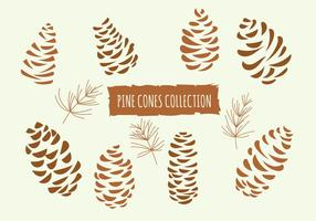Hand Drawn Vector Illustrations. Collection of Pine Cones
