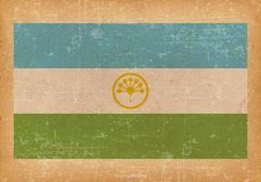 Bandiera del grunge di bashkortostan