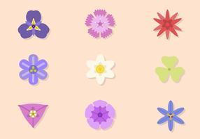 Flache Blume Vektor