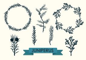 Branches Collection Vector