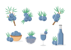 Juniper Pictogrammen Vector