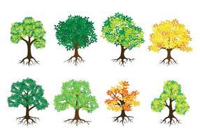 Árbol con las raíces de vectores iconos