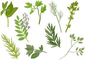 Vecteurs Herbes gratuites