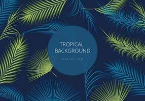 Libre Palm Background Vector