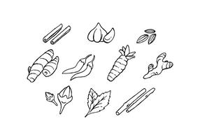 Free Culinary Spices Hand Drawn Icon Vector