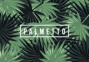 Background Palmetto