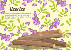 Licorice Root En Bloem Vector