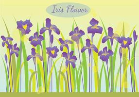 Iris Flower In The Morning Illustratie