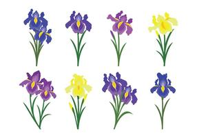 Beautiful Iris Flower Vector Icons