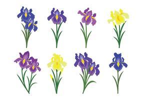 Hermosa flor de iris de vectores iconos