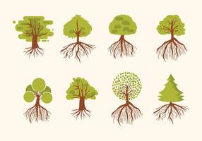 Árbol con las raíces del vector