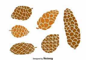 Vector Nice Collection Pine Cones