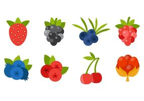 Berries Icons Vector