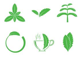 vettore di logo di stevia