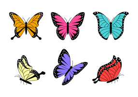 Mariposa hermosa vector