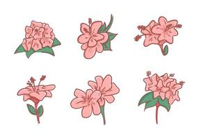 Beautiful Rhododendron Flower Vectors