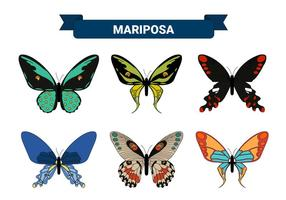 Colorful Butterfly Vector Collections