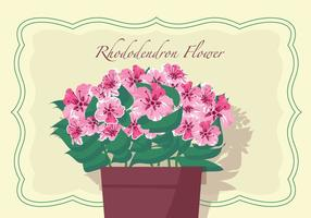 Rhododendron Flowers In Pot Vector Illustration