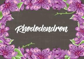 Rhododendron Flowers Frame Vector Illustration