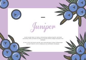 Juniper hälsningskort
