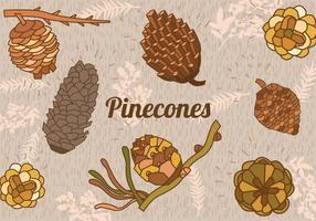 Conjunto, pinho, cones