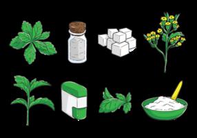 Vecteur de Stevia dessiné à main libre
