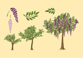 Wisteria Plant Grow Free Vector