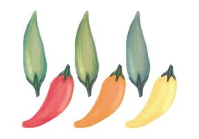 Vector Hand Drawn Peppers Pattern