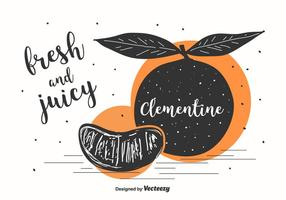 Clementine Illustration Background vector