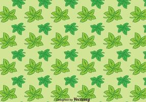 Stevia Leaves Green Background Pattern Vector