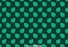 Stevia Blätter Nahtlose Muster Vektoren