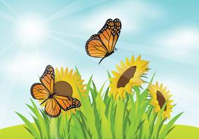 Free Mariposa With SunFlower Garden Illustration