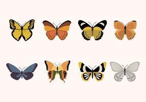 Flache Schmetterlingsvektoren