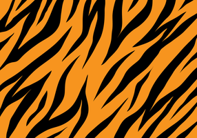 Fundo da textura do tigre
