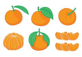 Clementine Vektor-Set