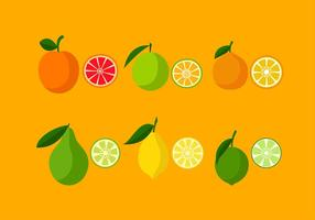 Verschiedene Orange Icon Set Free Vector