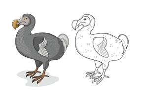 Grå Dodo Fågel Illustration