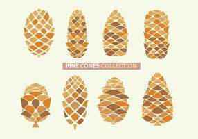 Set of Close Up of Pine Cones with handdraw