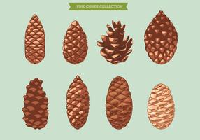 Set of Pine Cone on Green Background