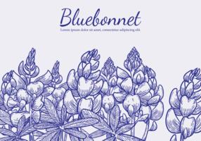 Mano libre dibujado Bluebonnet flor vectores