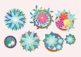 Vector Watercolor Potted Flowers Collection