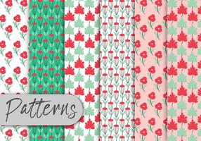 Colorful Roses Pattern Set