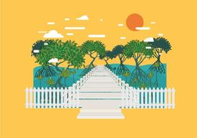 Boardwalk in Mangrove Forest Vector