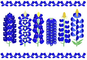 Vacker Bluebonnet Flower Vector