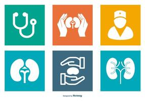 Urology Related Icon Collection vector